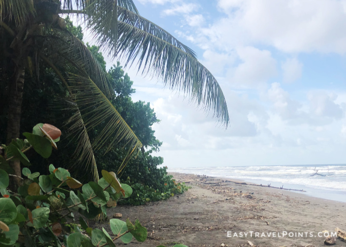 looking down the coastline at tortuguero beach